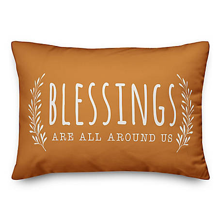 Designs Direct Blessings Are All Around Us 14 x 20 Pillow, 5750-AI1