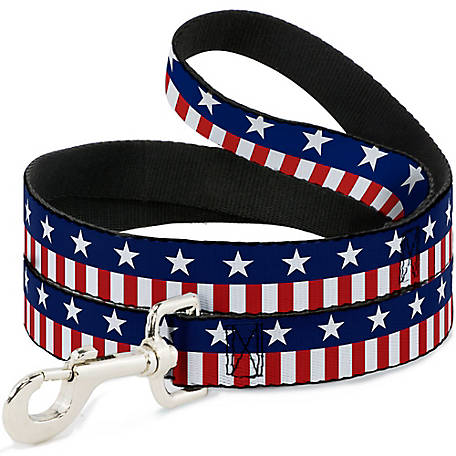 Buckle-Down Ana Stars 2 Blue/White/Red/White Dog Leash, DL-W30171