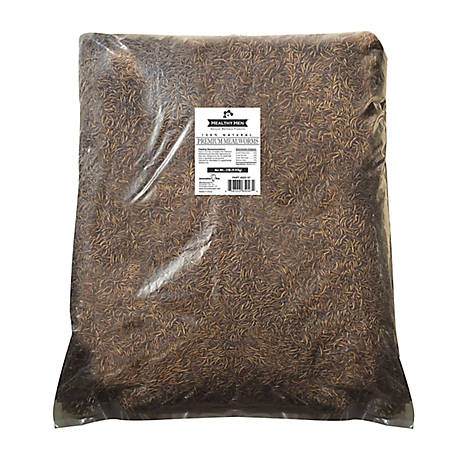Healthy Hen Mealworms 22 lb. Bag, 650-47