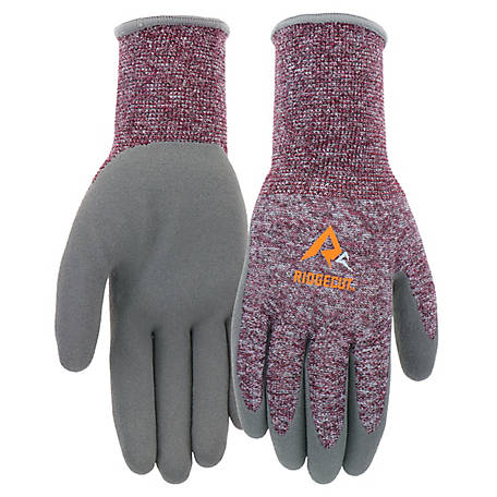 Ridgecut Women's Coolmax Foam Glove