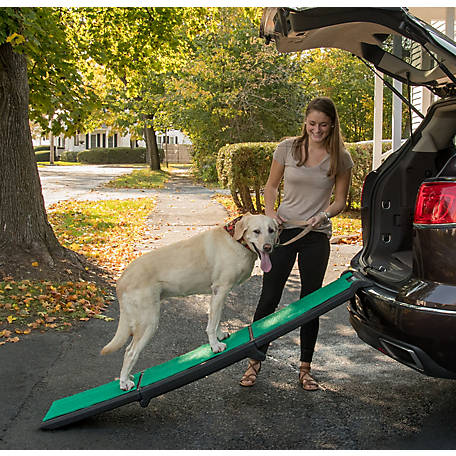 Pet Gear Inc. Tri-Fold Travel Lite Ramp with SupertraX, PG9371GRSX