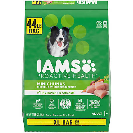 Iams Proactive Health Adult Minichunks Dry Dog Food, 44 lb.