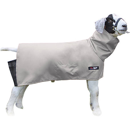 Sullivan Supply Canvas Goat Blanket, CGB-L, CGB-L