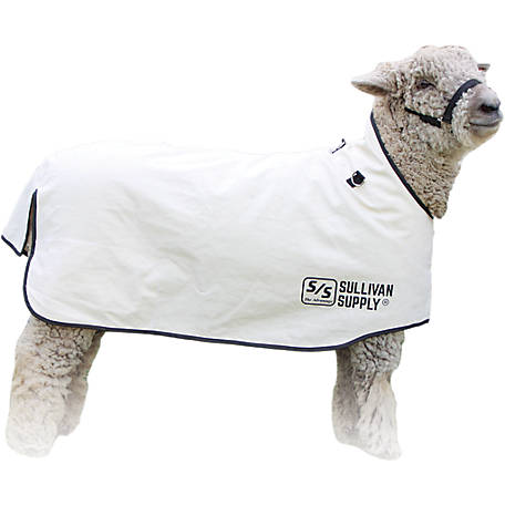 Sullivan Supply Canvas Lamb Blanket, CSB