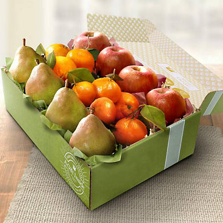 Golden State Fruit California Festive Trio Gift Box, AB2023