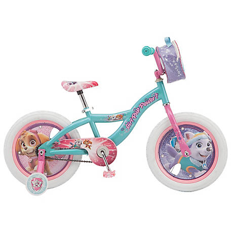 Paw Patrol Girl's 16 in. Bicycle, Green/Pink, R0601
