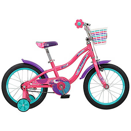 Schwinn Girl's Jasmine 16 in. Bicycle, Pink, S1681F