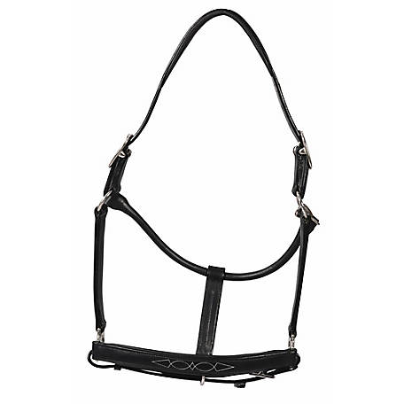 Henri de Rivel Pro Fancy Padded Rolled Throat Triple Stitched Halter, 5019