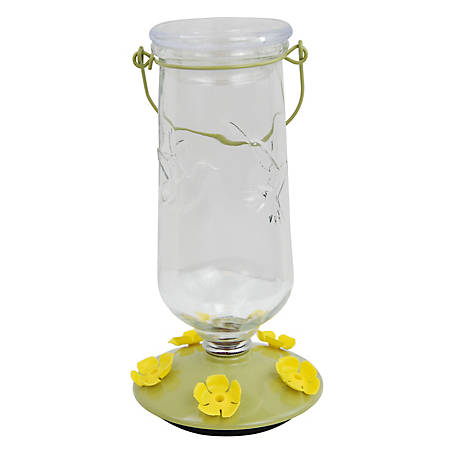 Perky-Pet Desert Bloom Top-Fill Glass Hummingbird Feeder, 9108-2