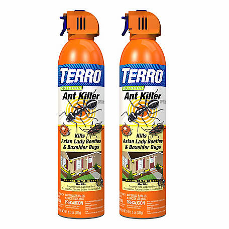 Terro 19 Oz Outdoor Ant Killer Spray Pack Of 2 T1700sr At Tractor Supply Co