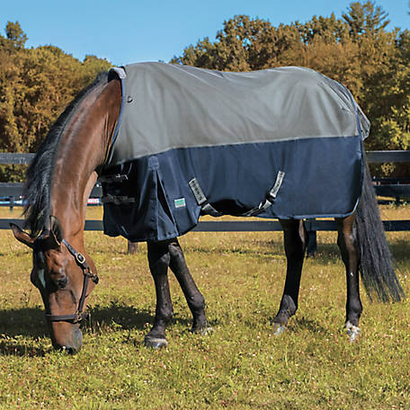 NorthWind Blankets by Rider's International Plus Heavyweight Turnout Blanket, 2.40154E+11