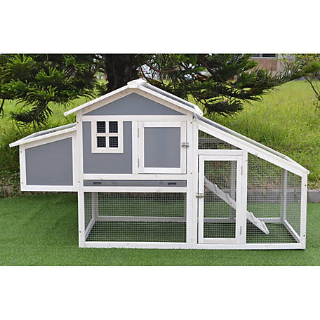 Coop King Modern Polycarbonate Chicken Coop with Attached Run and Metal Pull-Out Tray, 617713