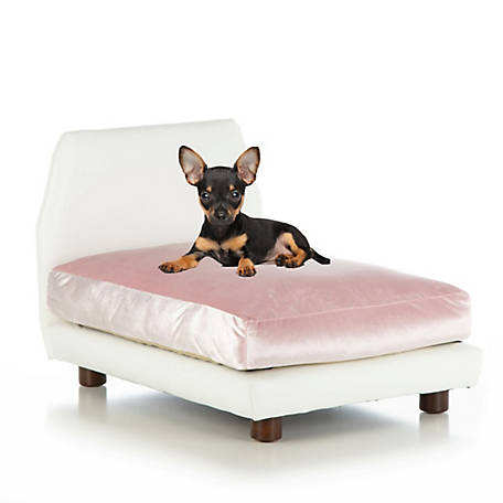 Club Nine Pets Lido Orthopedic Dog Bed