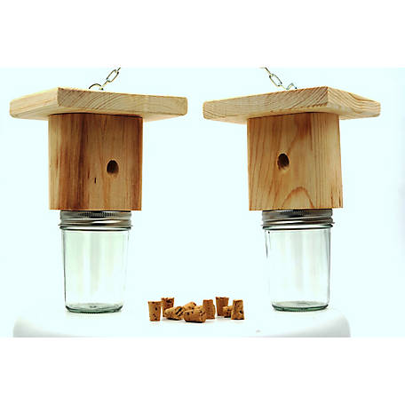 Mac's Carpenter Bee Trap, Set of 2, PLBT100