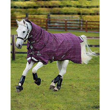 Rhino Pony Plus, Medium with Detachable Hood, AKBP92