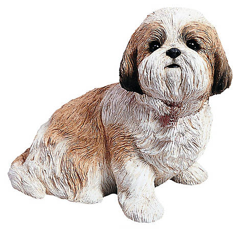 Sandicast Life Size Gold/White Shih Tzu Dog Sculpture