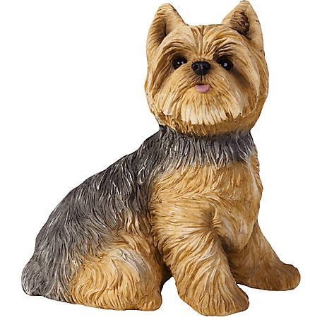 Sandicast Life Size Yorkshire Terrier Dog Sculpture