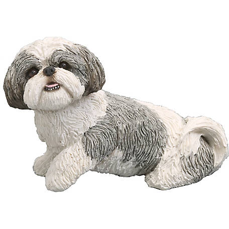 Sandicast Mid Size Silver/White Shih Tzu Dog Sculpture