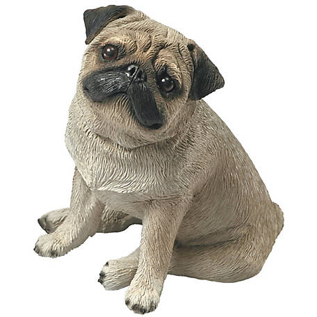 Sandicast Mid Size Fawn Pug Dog Sculpture