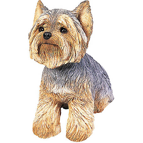 Sandicast Original Size Yorkshire Terrier Dog Sculpture
