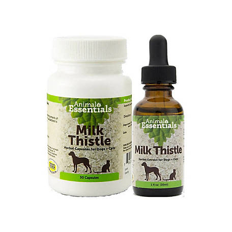 Animal Essentials Milk Thistle Herbal Extract for Cat & Dog, 1 oz., 9009215