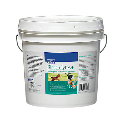 Sav-A-Caf Electrolytes Plus Multi-Species Supplement, 10 lb. Pail