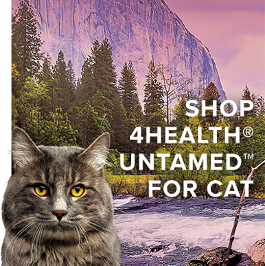 Shop Untamed for Cat