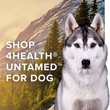 Shop Untamed for Dog