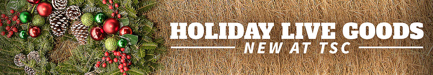 New Holiday Live Goods- Tractor Supply Co.