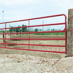 Shop Select Farm Gates at Tractor Supply Co.