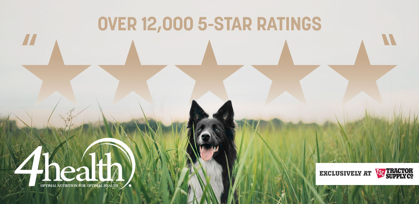 Over 12,000 5-Star reviews