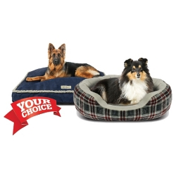 Shop Select Dog Beds at Tractor Supply Co.