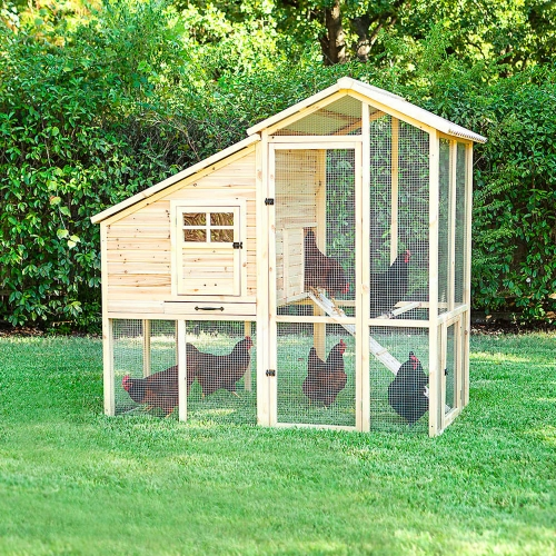 Superior Construction Chicken Coop - Tractor Supply Co.