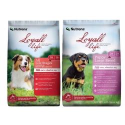 Shop 30-40 lb. Loyall Life Dog Food at Tractor Supply Co.