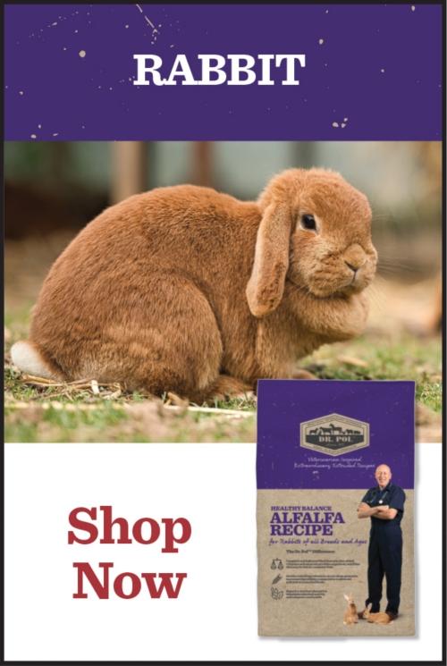 Rabbit - Tractor Supply Co.
