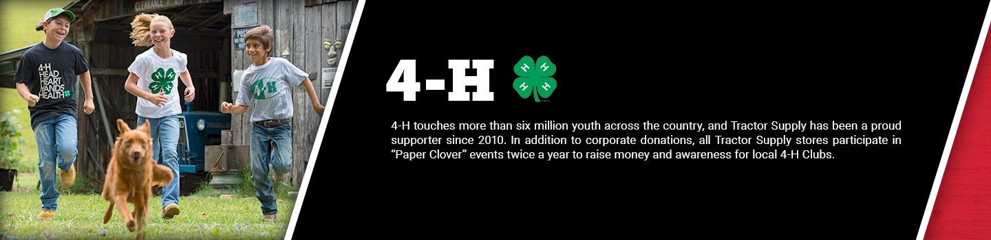 4-H: 4-H touches more than six million youth across the country, and Tractor Supply has been a proud supporter since 2010. In addition to corporate donations, all Tractor Supply stores participate in &rquot;Paper Clover&lquot; events twice a year to raise money and awareness for local 4-H Clubs.