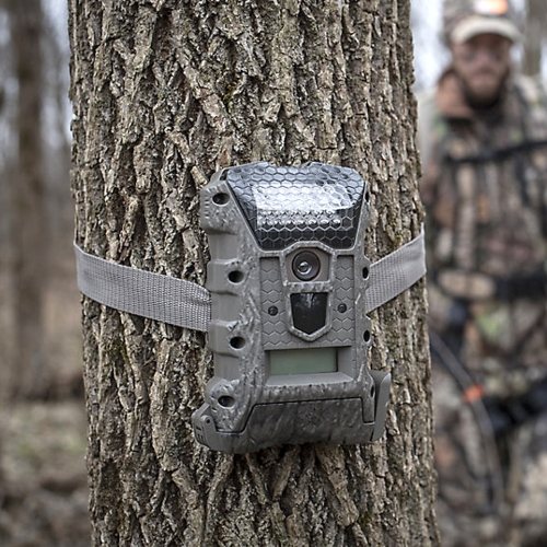 Trail Cameras - Tractor Supply Co.