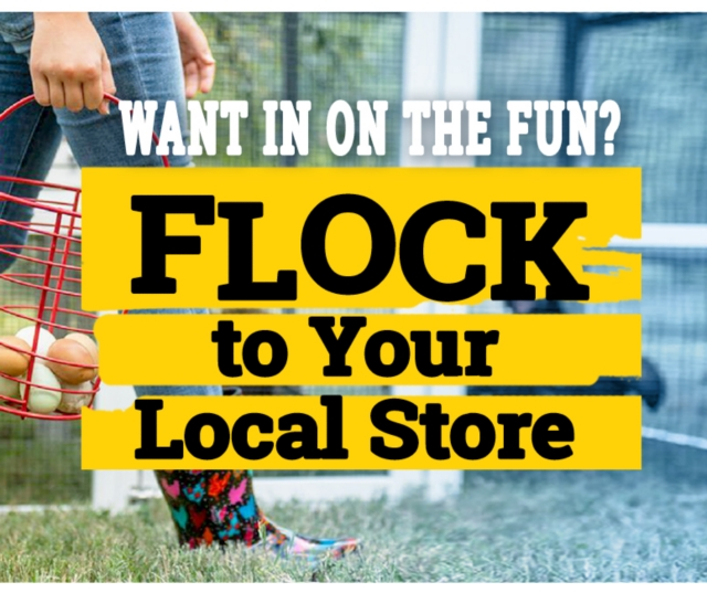 Want in on the fun? Flock to your local store.