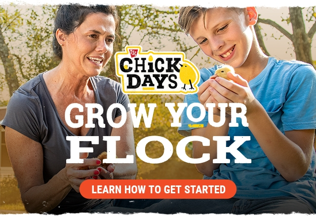 TSC Chick Days. Grow Your Flock. Learn How To Get Started.