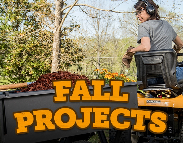 Fall Projects.
