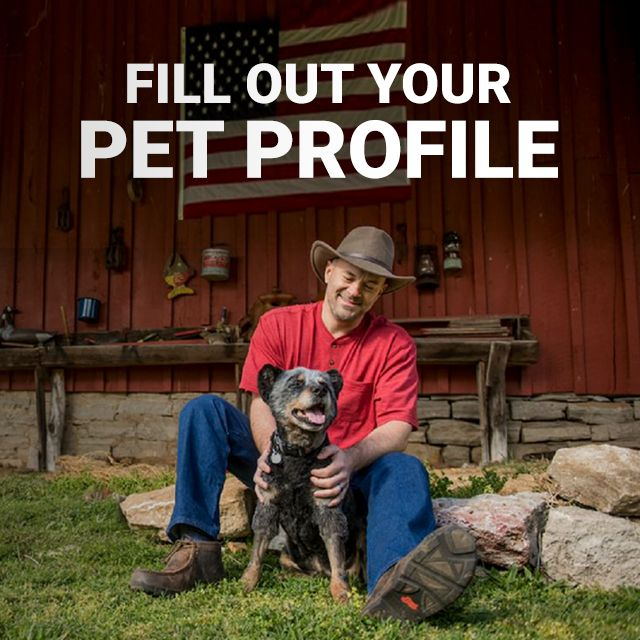 Fill Out Your Pet Profile.