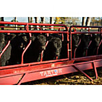 Cattle Fence Line Feeder Panel, 10 ft., 2FSR10