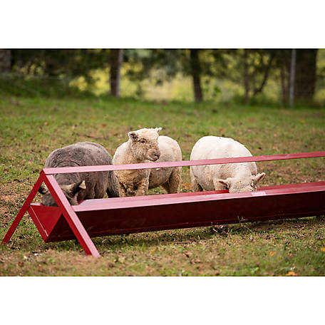 Tarter Farm and Ranch Equipment 8 ft. Trough Feeder