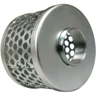 Green Leaf 2 in. Zinc Plated Round Hole Basket Strainer