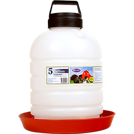 Farm-Tuff Top Fill Poultry and Game Bird Waterer, 5 gal., P5G04