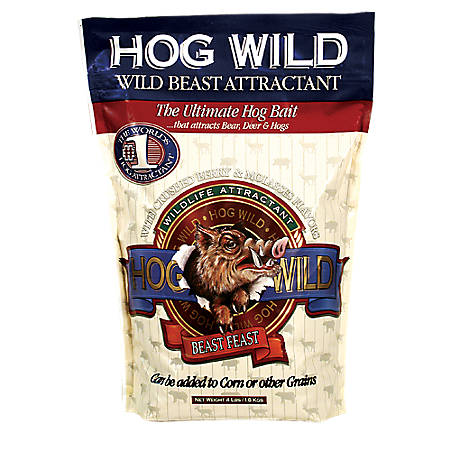 Big and J Pigs Dig It Granular Hog Hunting Attractant Feed Enhancement 5 lb Bag