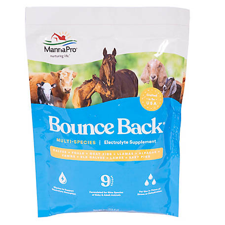 Manna Pro Bounce Back, 4 oz. Single