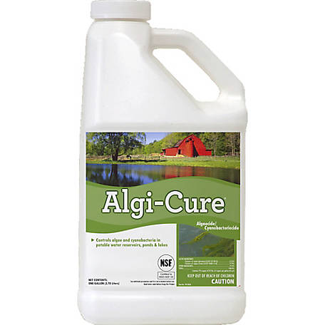 Applied Biochemists Algi-Cure Algaecide, 395404A