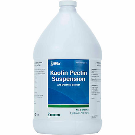 Ideal Animal Health Kaolin Pectin Suspension, 1 gal.