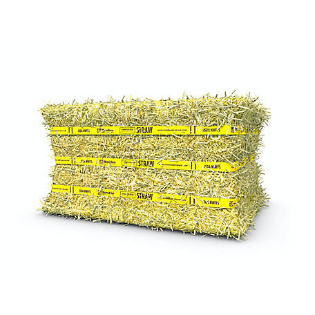 Standlee Standlee Premium Certified Straw Compressed Bale